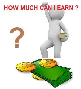 How much can I earn online?